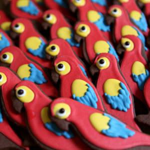 10 sablés Perroquet